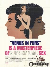 Vênus em Fúria - Poster / Capa / Cartaz - Oficial 1