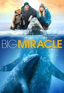O Grande Milagre - Poster / Capa / Cartaz - Oficial 4