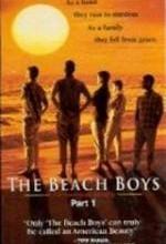 The Beach Boys: Uma Família Americana - Poster / Capa / Cartaz - Oficial 1