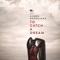 To Catch a Dream - Poster / Capa / Cartaz - Oficial 2