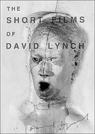 The Short Films of David Lynch (The Short Films of David Lynch)