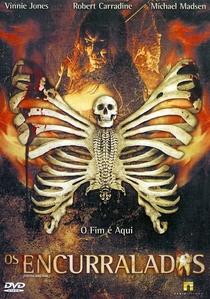 Os Encurralados - Poster / Capa / Cartaz - Oficial 3
