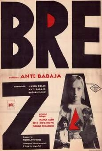 Breza     (The Birch Tree)  - Poster / Capa / Cartaz - Oficial 1