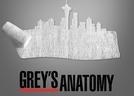 Grey's Anatomy: Message of Hope (Seattle Grace: Message of Hope)