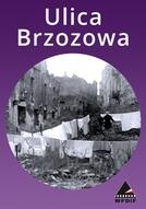 Ulica Brzozowa (Ulica Brzozowa)