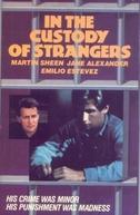 Nas Garras do Destino (In the Custody of Strangers)
