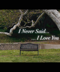 I Never Said I Love You - Poster / Capa / Cartaz - Oficial 1