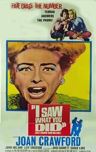 Eu Vi Que Foi Você - Poster / Capa / Cartaz - Oficial 3