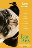 Nossa Vida com Cães (Dog Days)