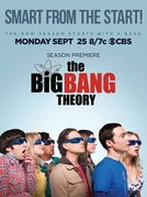 Big Bang: A Teoria (11ª Temporada) (The Big Bang Theory (Season 11))