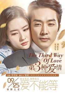 The Third Way of Love - Poster / Capa / Cartaz - Oficial 1