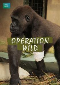 Operation Wild - Poster / Capa / Cartaz - Oficial 1