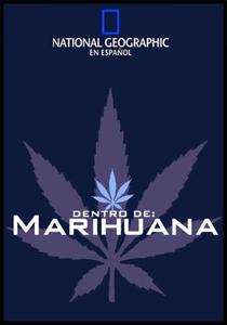 Bastidores - Poster / Capa / Cartaz - Oficial 1
