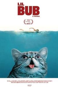Lil Bub & Friendz - Poster / Capa / Cartaz - Oficial 1