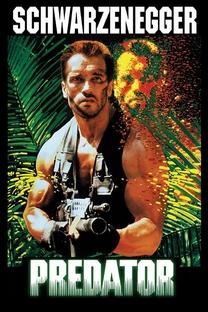 O Predador - Poster / Capa / Cartaz - Oficial 6
