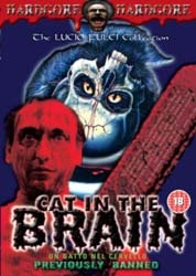 A Cat in the Brain - Poster / Capa / Cartaz - Oficial 3