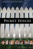 Picket Fences (1ª Temporada)