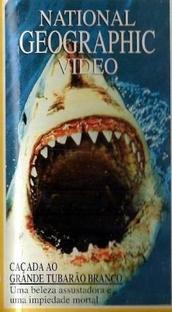 Caçada ao Grande Tubarão Branco - National Geographic - Poster / Capa / Cartaz - Oficial 1