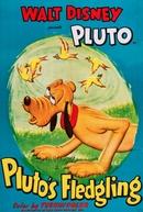 Pluto's Fledgling  (Pluto's Fledgling )