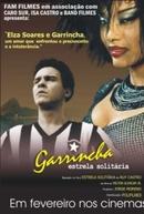 Garrincha - Estrela Solitária (Garrincha - Estrela Solitária)