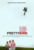 Pássaros Excentricos (Pretty Bird)