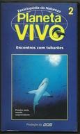 Planeta Vivo - Encontros com Tubarões (Planeta Vivo - Encontros com Tubarões)
