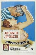 Frenesi de Paixões (Female On The Beach)