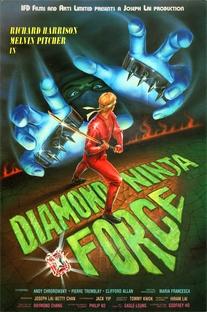 Ninja dos Ninjas - Poster / Capa / Cartaz - Oficial 1