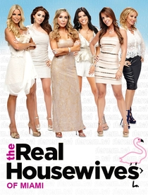 The Real Housewives of Miami - Poster / Capa / Cartaz - Oficial 1