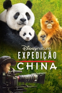 Expedição China - Poster / Capa / Cartaz - Oficial 2