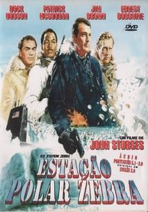 Estação Polar Zebra - Poster / Capa / Cartaz - Oficial 6