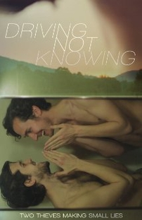 Driving Not Knowing - Poster / Capa / Cartaz - Oficial 2