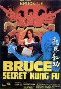 Bruce's Secret Kung Fu - Poster / Capa / Cartaz - Oficial 1