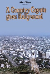 A Country Coyote Goes Hollywood - Poster / Capa / Cartaz - Oficial 1