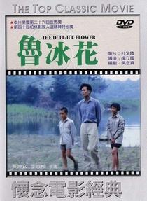Dull Ice Flower - Poster / Capa / Cartaz - Oficial 5