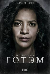 Gotham (1ª Temporada) - Poster / Capa / Cartaz - Oficial 11