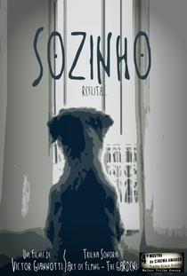 Sozinho - Poster / Capa / Cartaz - Oficial 1
