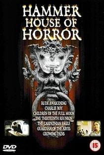 A Casa do Terror - Poster / Capa / Cartaz - Oficial 6