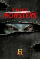 Monstros Reais (True Monsters)