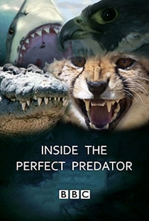 Por Dentro do Predador Perfeito - Poster / Capa / Cartaz - Oficial 1