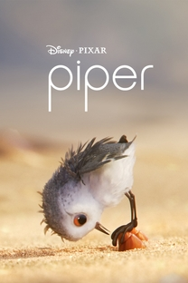 Piper: Descobrindo o Mundo - Poster / Capa / Cartaz - Oficial 1