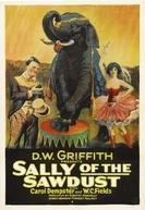 Sally, a Filha do Circo (Sally of the Sawdust)