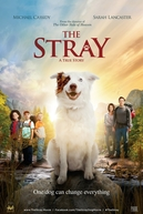 Uma Aventura e Tanto (The Stray)