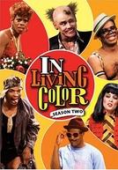 In Living Colors - 2ª temporada