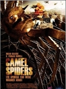 Camel Spiders (Camel Spiders)