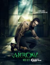 Arrow (1ª Temporada) - Poster / Capa / Cartaz - Oficial 4