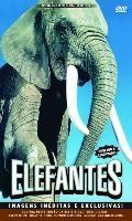 Elefantes - Poster / Capa / Cartaz - Oficial 1
