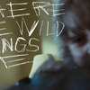 Crítica de Onde Vivem os Monstros (Where the Wild Things Are, Spike Jonze, 2009, 101 minutos)