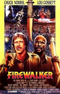 Os Aventureiros do Fogo - Poster / Capa / Cartaz - Oficial 3