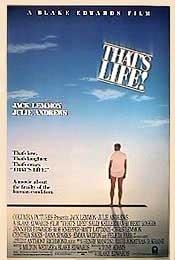 Assim é a Vida - Poster / Capa / Cartaz - Oficial 1